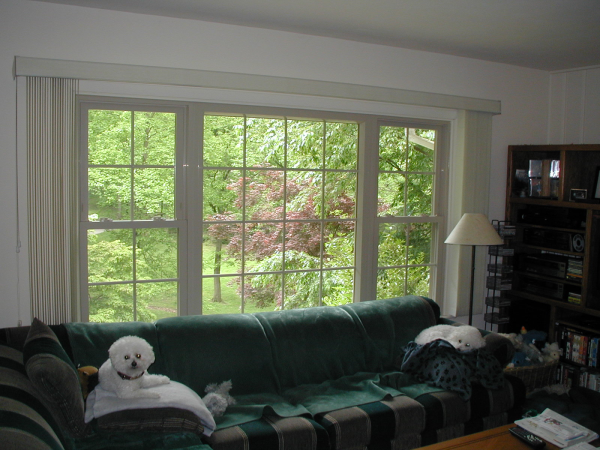 picture window in almond with white trim
